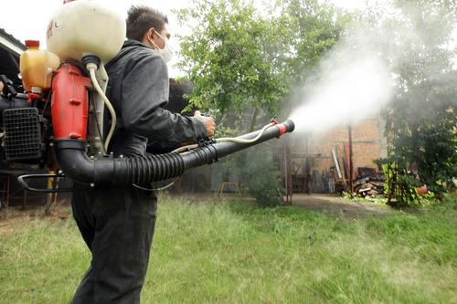 servicio de fumigación