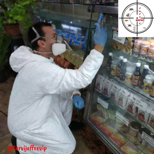 servicio de fumigación comercial chiripas cucarachas moscas