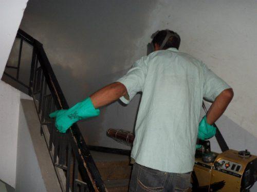 servicio de fumigacion empresa de fumigaciones futeinca