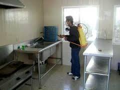 servicio de fumigacion en caracas chiripa ratones garrapata