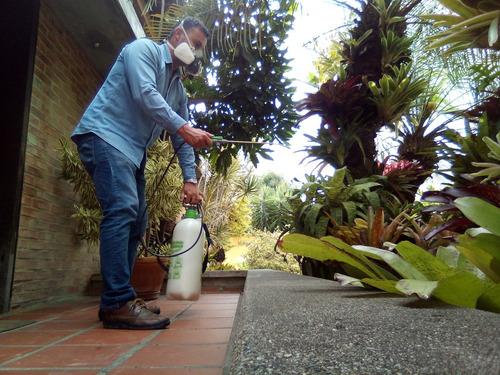 servicio de fumigación termitas zancudos chiripas pulgas