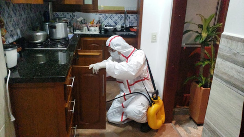 servicio de fumigación y desinfección de ambientes