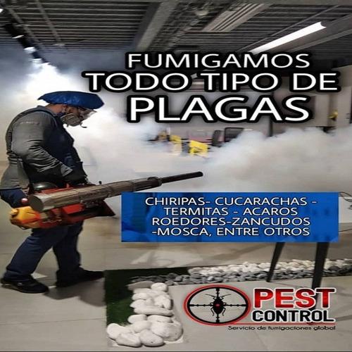 servicio de fumigaciones y desinfeccion al mejor precio