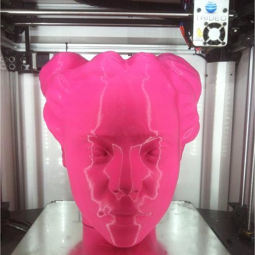 servicio de impresión 3d profesional. prototipos, moldes,etc