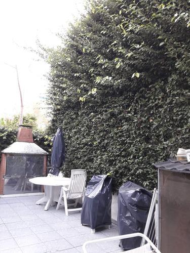 servicio de jardinería en general,poda de enredaderas