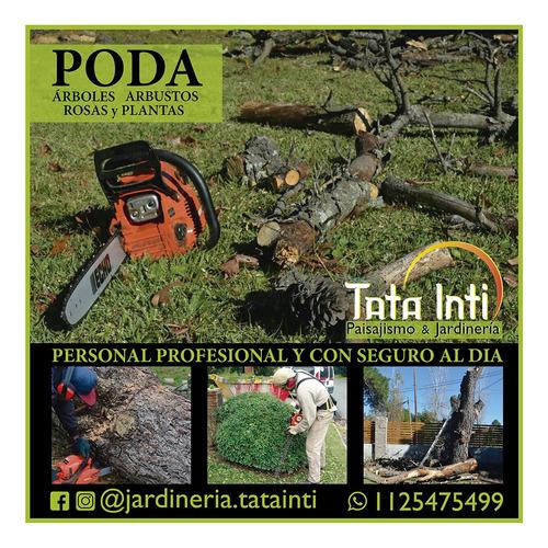 servicio de jardinería profesional y paisajismo.