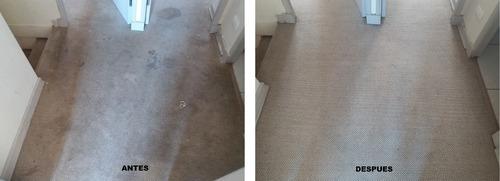 servicio de lavado de alfombras