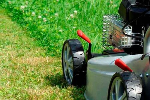 servicio de mantenimiento de espacios verdes