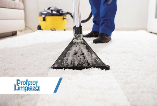 servicio limpieza alfombras tapizados