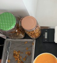 servicio pruebas y maquila deshidratador de alimentos