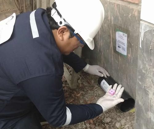 servicio sanitizacion desratizacion control plagas
