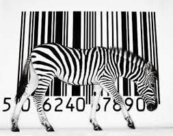 servicio tecnico impresoras zebra