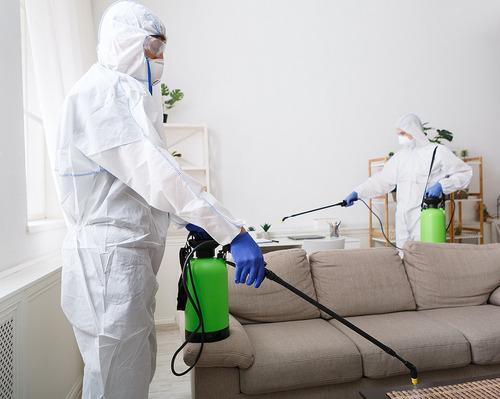 servicios de  desinfección y sanitizacion sars covid-19