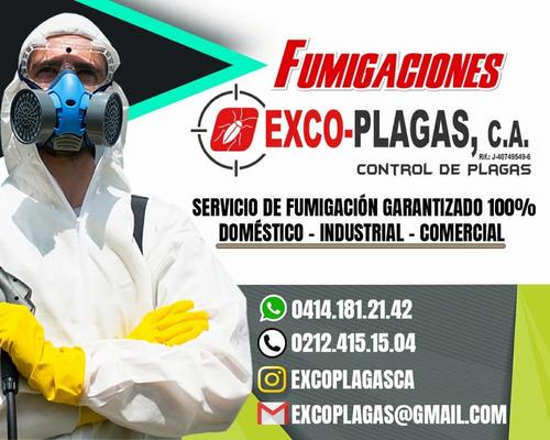 servicios de fumigacion contra chiripas cucarachas etc