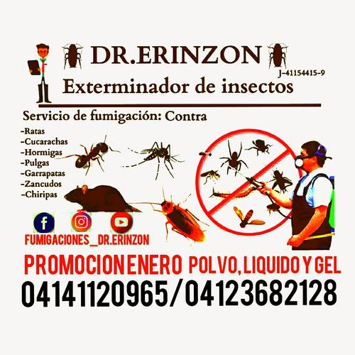 servicios de fumigación cucarachas zancudos chiripas moscas
