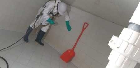 servicios de fumigación, desinfección, control de plagas