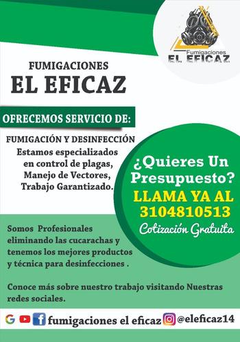 servicios de fumigación y desinfección