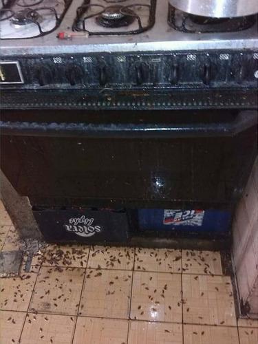 servicios de fumigaciones para chiripas y cucarachas