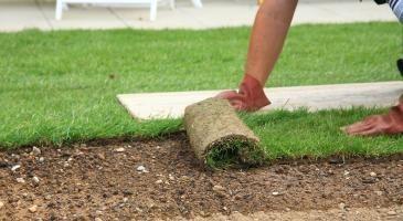 servicios de paisajismo y areas verdes