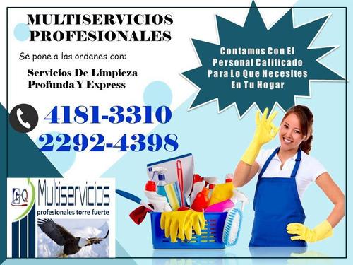 servicios domesticos