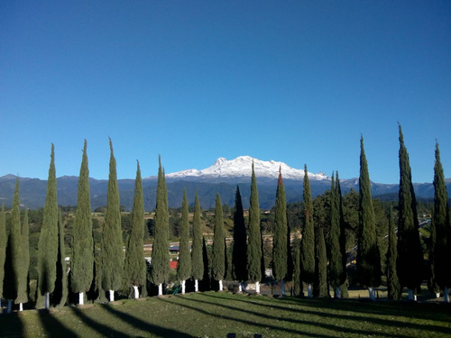 servicios funerarios, cementerio y cremaciones