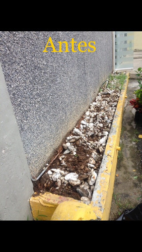 servicios mantenimiento jardinería