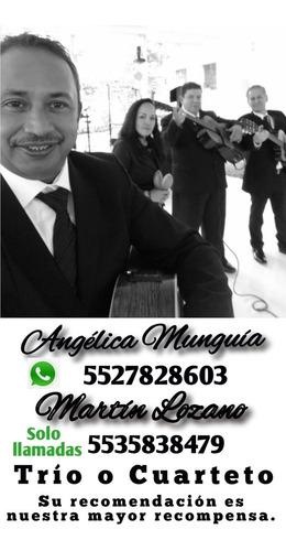 servicios musicales trío san martín