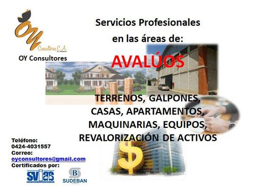servicios profesionales de avaluo, peritos, tasaciones
