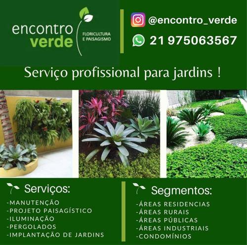 serviço de manutenção, construção e reforma em jardim