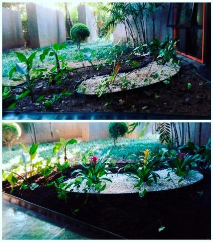 serviço paisagismo e jardinagem