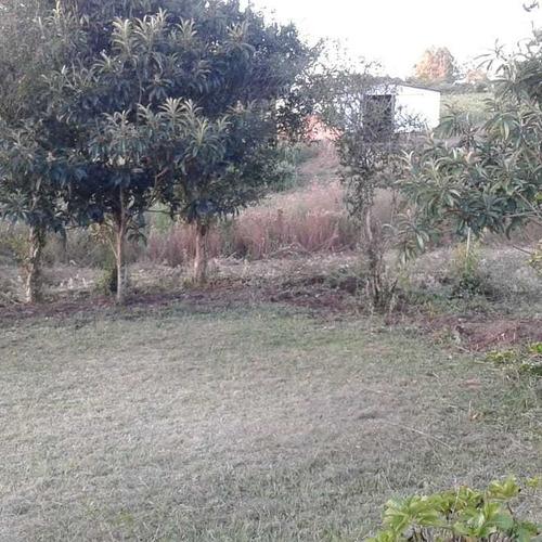 serviços de jardinagem completa