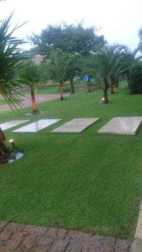 serviços de jardinagem e manutenção de piscinas