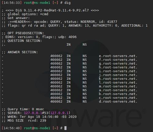 servidores zabbix, dns recursivos, dns reversos