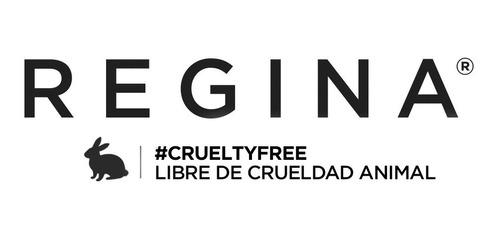 set 12 brochas y pinceles + brochero # crueltyfree regina