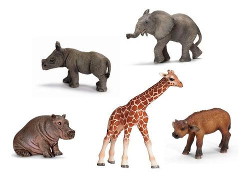 set animal crías áfrica vida salvaje ( wild life season)