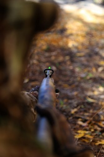 set de miras fibra optica caceria escopeta pavo venado ilumi