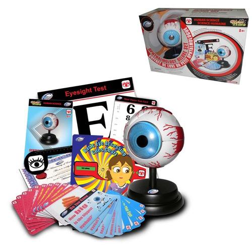 set de oftalmología, modelo tridimensional ojo y tarjetas