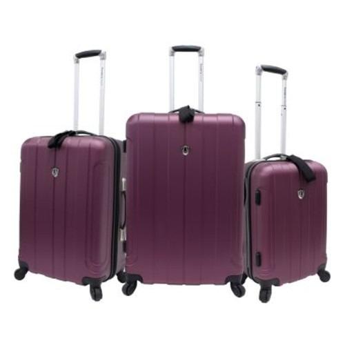 set equipaje del viajero de elección de equipajes de los vi