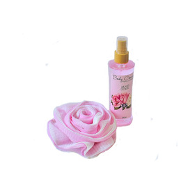 Set Fresh Rose