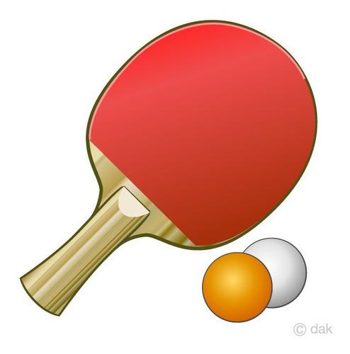 set paletas, pelotas y red ping pong