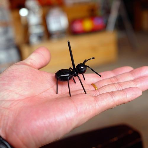 set pinches hormiga x 12 picada copetin copetinero diseño