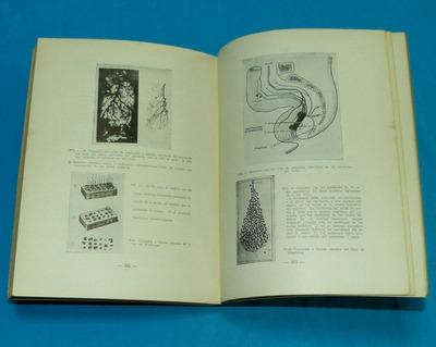 sétimo congreso interamericano de cirugía lima 1950 medicina