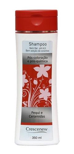 shampoo condicionador cabelo