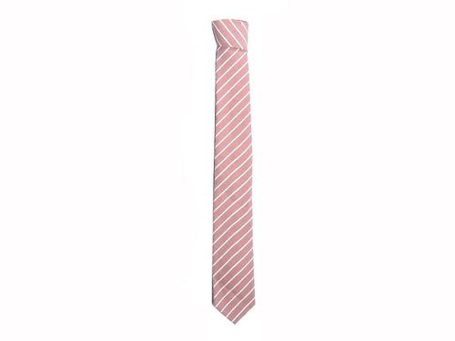 shannon corbata