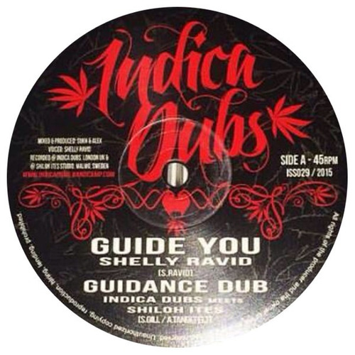 shelly ravid, indica dubs, shiloh ites - guide you (10 )