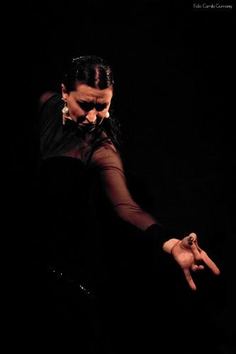show eventos danza
