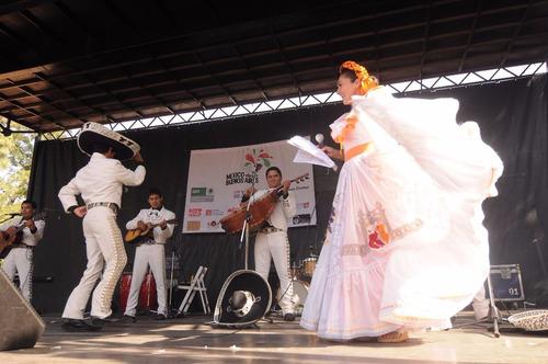 show fiestas animacion mariachi mariachis