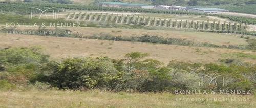 sierra de los caracoles, casi 30 hectáreas frente a agroland