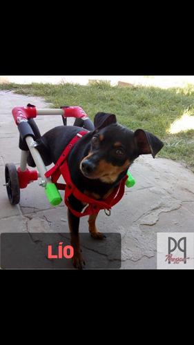 silla ruedas perros