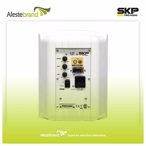 sistema amplificado estéreo skp sk208a 400w